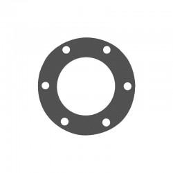 Oil seal ring