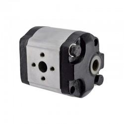 Lifan 40ZB60 Non Return Flap / Gasket