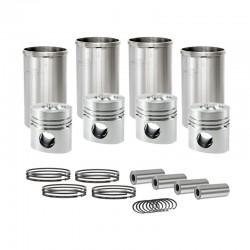 CZ480 Cylinder rebuild kit