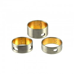 Camshaft Bearings 4L22
