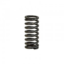 Brake Piston Spring Foton TD