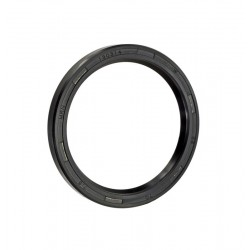Seal Ring Foton TD TF