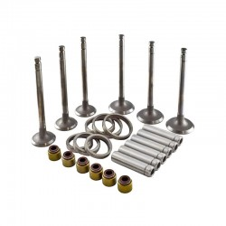 Valve Rebuild Set NJ385