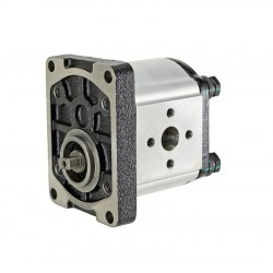 Gear Pump E314 RR