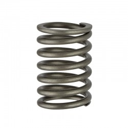 QC4102 Outer Valve Spring