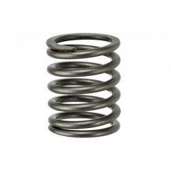 QC495 QC498 Outer Valve Spring