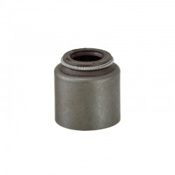 QC Valve stem oil seal