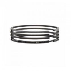 S1100 Piston rings