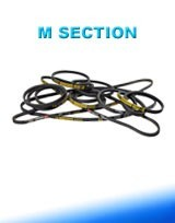 M section V Belts in Midland WA 6056